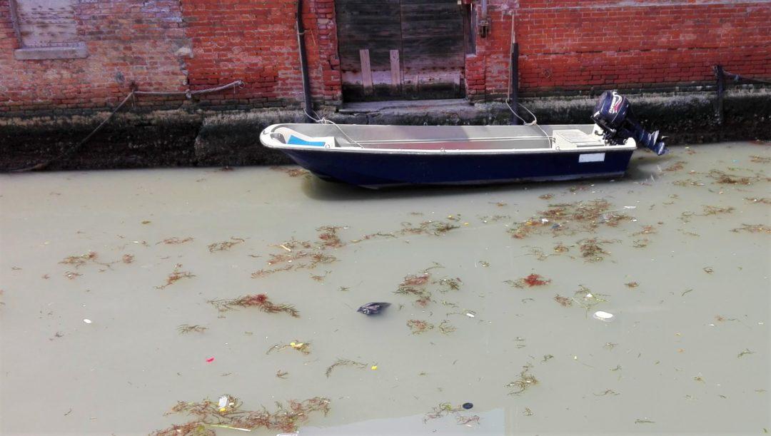 A boat docked front of the door in Venice