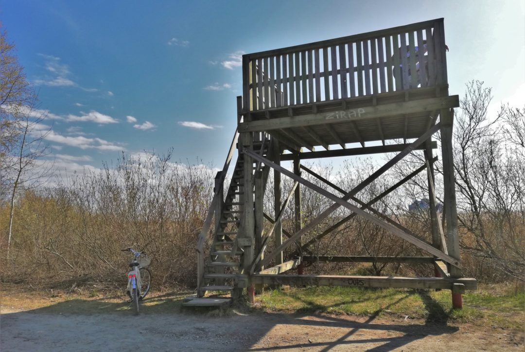 Small wooden birdwatching tower