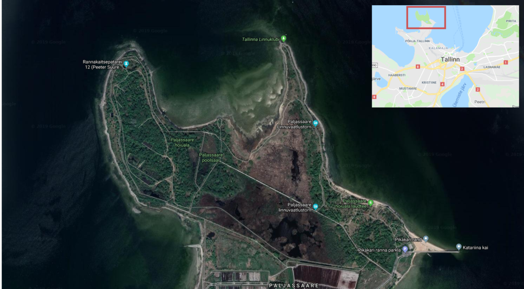 Paljassaare special conservation area - Google Maps screenshot