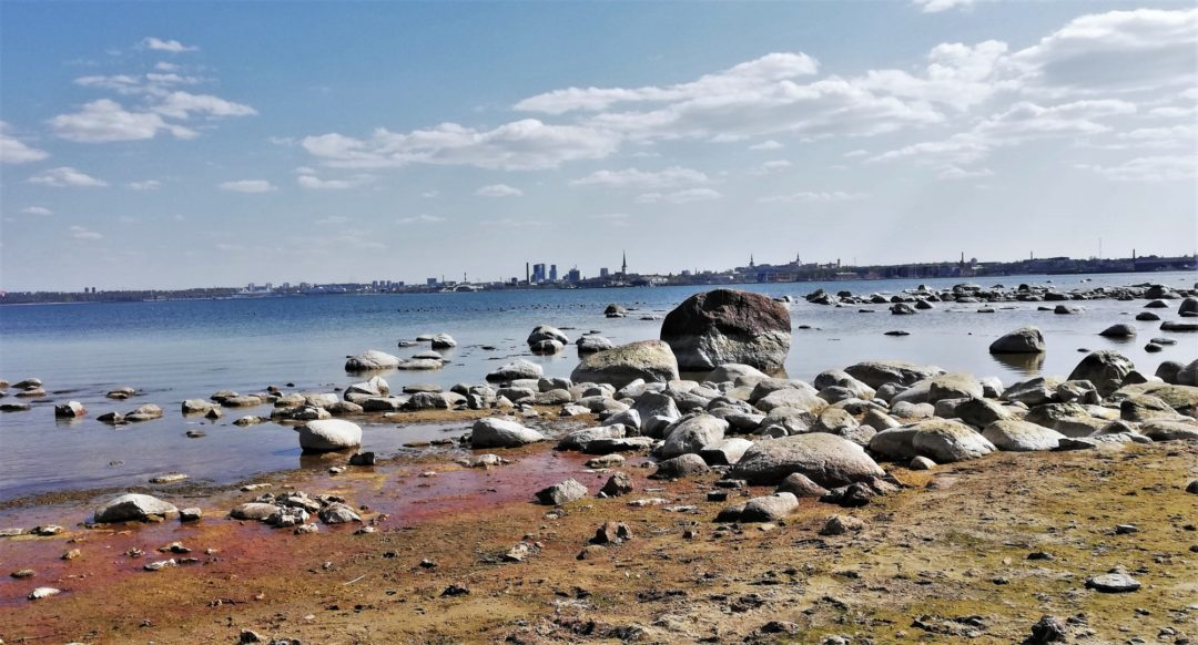 Panorama view of Tallinn
